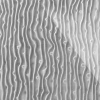 Стеклянная плитка Tree 3D серебро 300 х 200 мм, Artpole, Россия
